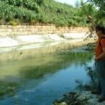 Shoal Creek Fly Fishing Austin | North of Cesar Chavez