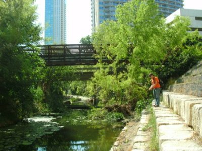 Shoal Creek Fly Fishing Austin | 3rd St.