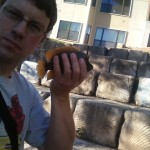 Bull Cichlid and me