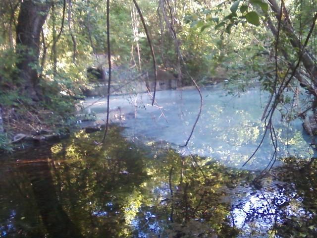 Sewage leak in Waller Creek