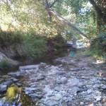 Waller creek pool