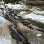 Waller Creek slough