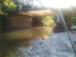 Bridge by secret cichlid hole