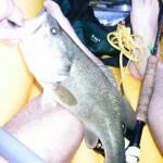 bass from kayak