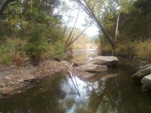 A promising but unproductive creek