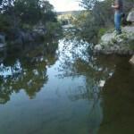 Bull Creek overhang fishing